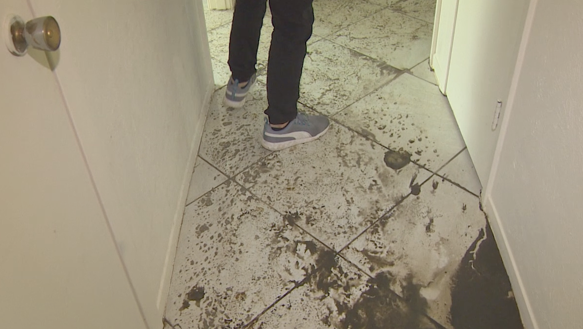 City taking blame for sewage backup into se houston home for Sewage backing up into house